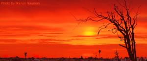 extreme-heat-5286